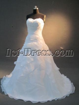 Elegant Simple Organza A-line  Wedding Dress IMG_2244