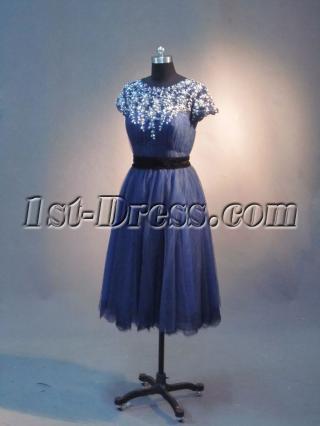 Romantic Vintage Short Mother of Groom Dress IMG_2639