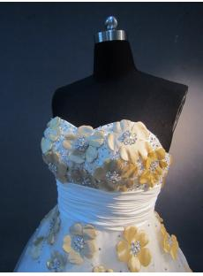 Flower Quinceanera dresses Plus Size IMG_2334