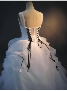 Plus Size Quinceanera Dresses with Black Color IMG_2855