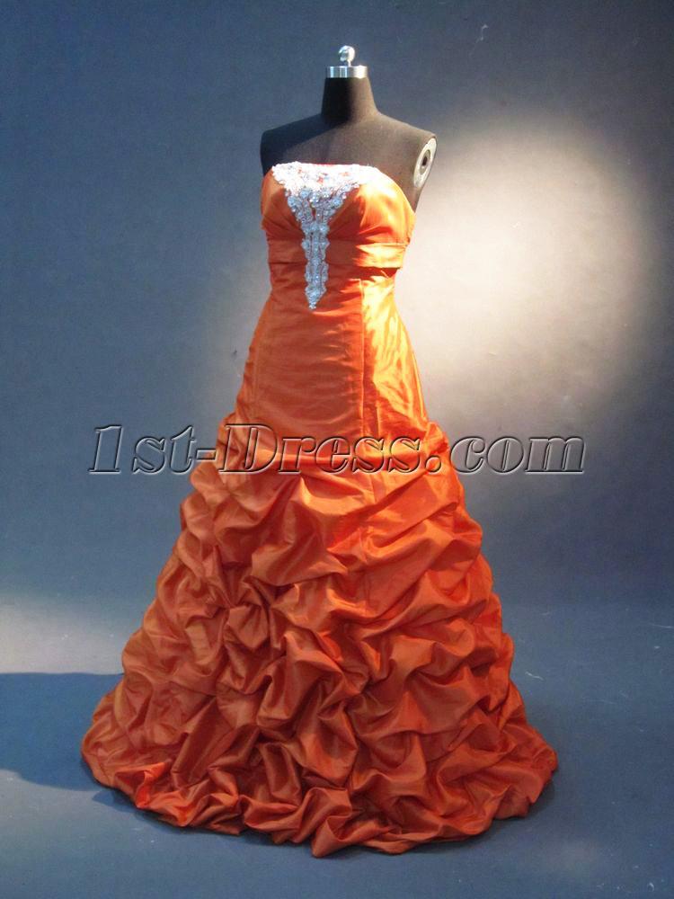 images/201301/big/Orange-Plus-Size-Quince-Dress-IMG_2302-120-b-1-1358281060.jpg