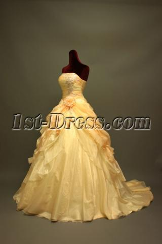 2012 A-line Champagne Couture Wedding Gowns IMG_6756