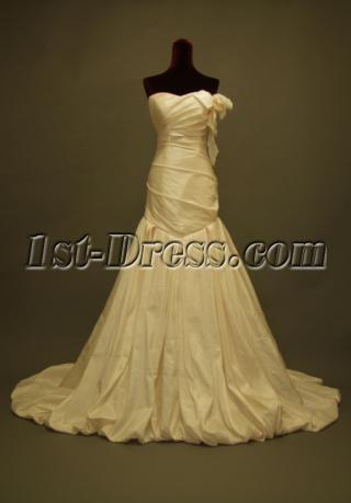Cheap Champagne Slim Mermaid Bridal Gowns IMG_227