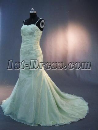 Champagne Straps Vintage Organza Bridal Dress IMG_3220