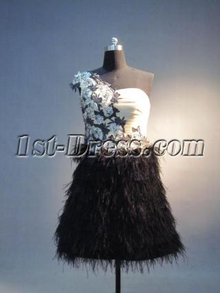 Cute One Shoulder Cocktail Dress with ostrich Feather IMG_3753