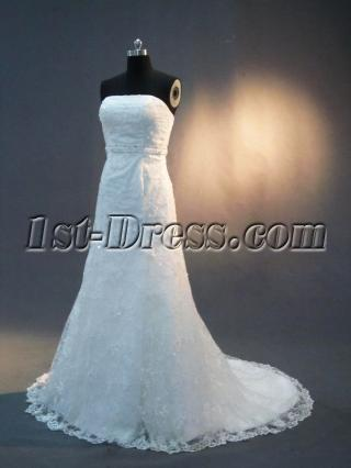 Empire Lace Column Wedding Gown IMG_3069