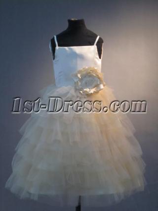 Sweet Flower Girl Dresses for Toddlers IMG_3942