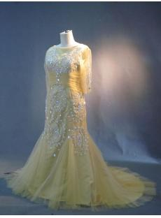 Champagne Plus Size Mother of Bride Dresses with Sleeves IMG_3021