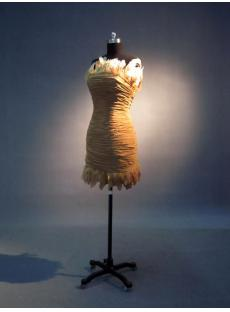 images/201302/small/Cheap-Feather-Mini-Dress-IMG_3480-328-s-1-1361521373.jpg