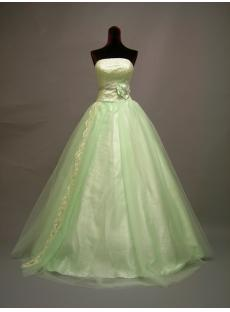Sage Ball Gown Quinceanera Dress 2011 DSCN2728