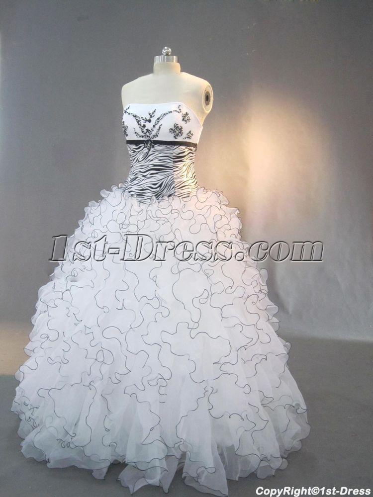 images/201302/big/Black-Beaded-Zebra-Quinceanera-Dresses-IMG_3014-265-b-1-1359984201.jpg