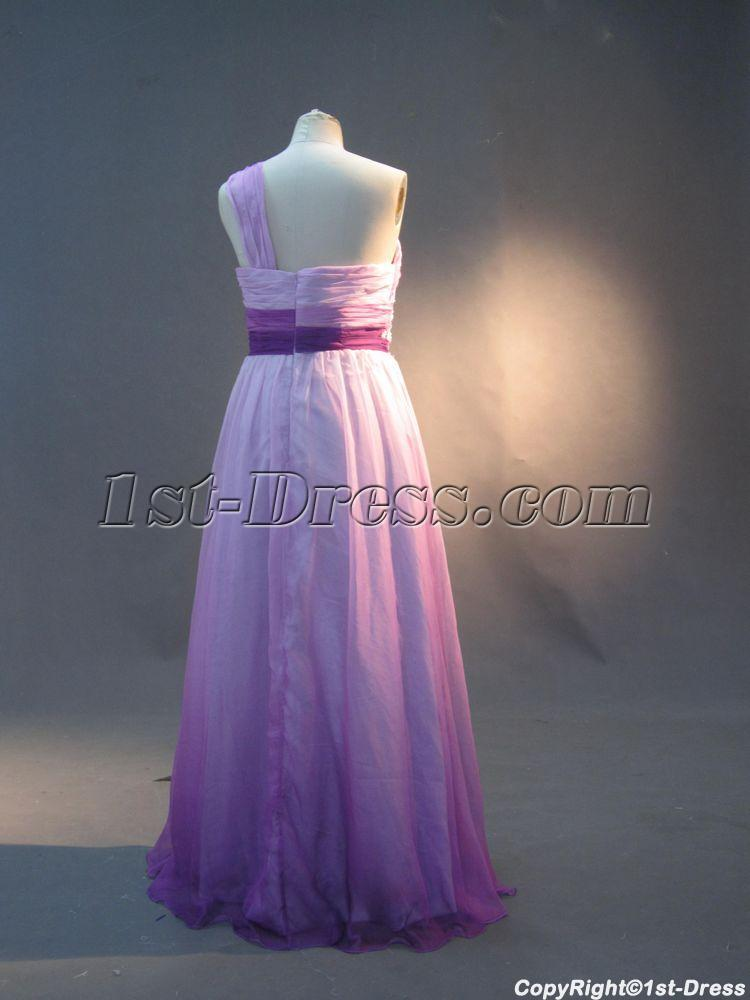 Lilac And Purple Plus Size Prom Dresses One Shoulder Img29951st