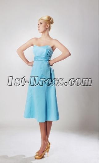 Cheap Blue Tea Length Homecoming Dresses 2012 SOV112002