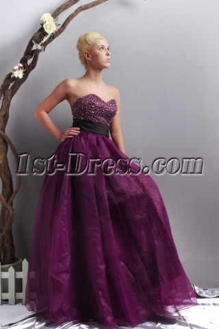 Dark Purple and Leopard Quinceanera Dress with Black Waistband SOV113008