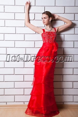 Decent Straps Vintage Formal Evening Dress IMG_0613