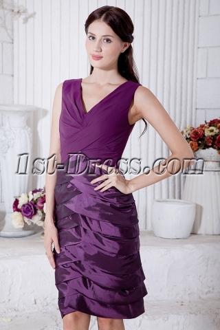 Purple Mother of Bride Dress Knee Length with V-Neckline IMG_7169