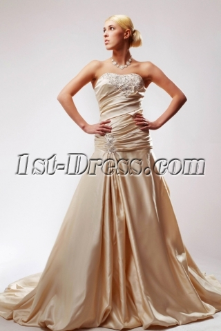 Strapless Beautiful Champagne Wedding Dresses with Corset Back SOV110038