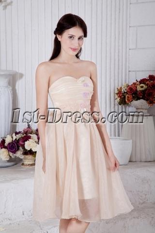 Tea Length Champagne Short Junior Bridesmaid Dresses IMG_7447