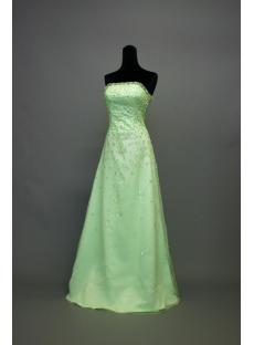 Beaded Sage Green Prom Dresses 2013 IMG_7027