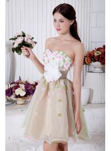 Brilliant Colorful Short Quiinceanera Dress IMG_7204