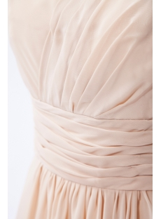 Champagne Charming Long Chiffon Modest Bridesmaid Dress IMG_9607