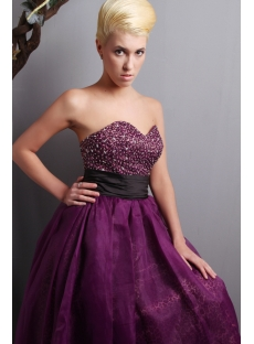images/201303/small/Dark-Purple-and-Leopard-Quinceanera-Dress-with-Black-Waistband-SOV113008-856-s-1-1364198138.jpg