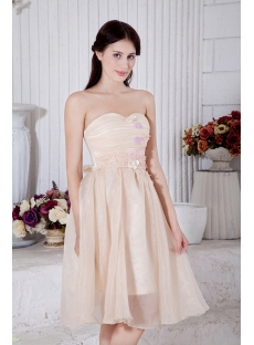 Tea Length Champagne Short Junior Bridesmaid Dresses IMG_7447