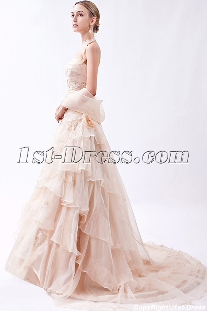 images/201303/big/2013-Champagne-Nectarean-Bridal-Gown-with-Shawl-IMG_0914-633-b-1-1362998542.jpg