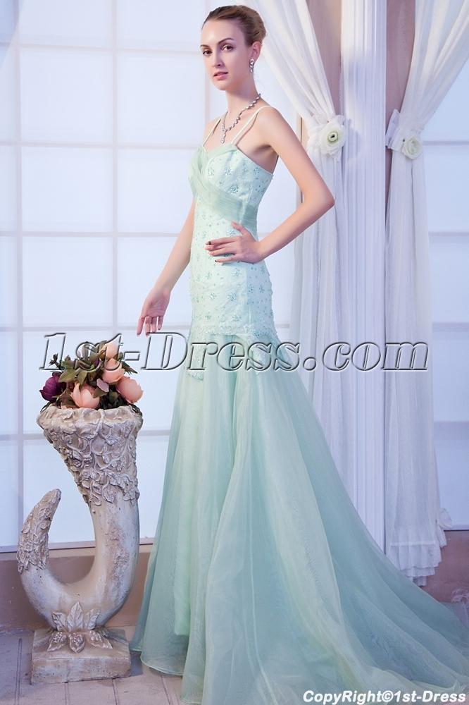 images/201303/big/Beautiful-Sage-Vintage-Evening-Dress-IMG_9957-607-b-1-1362504217.jpg