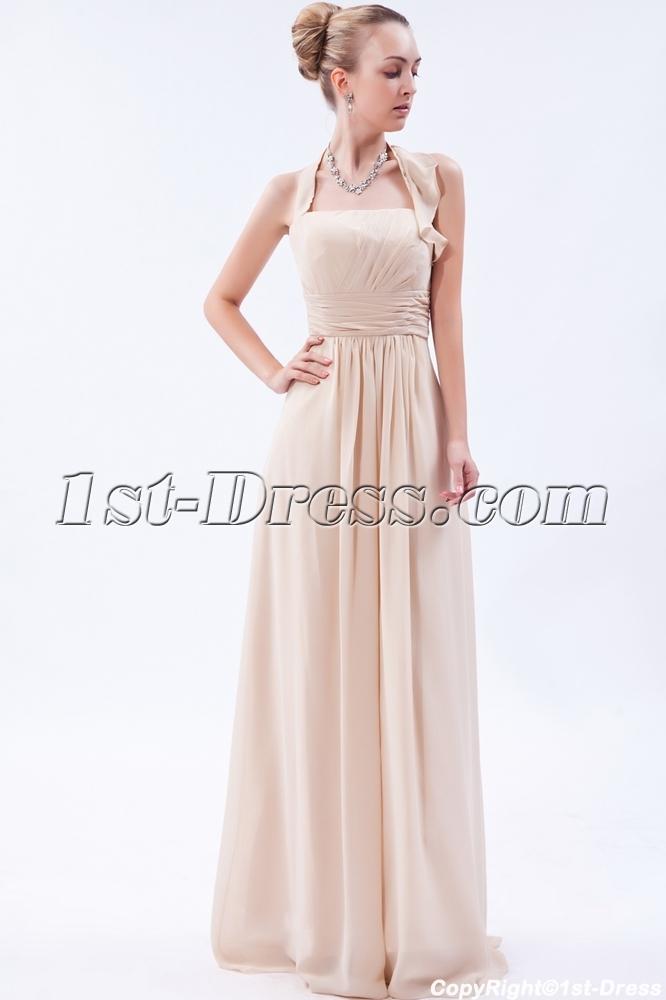 images/201303/big/Champagne-Charming-Long-Chiffon-Modest-Bridesmaid-Dress-IMG_9607-590-b-1-1362484111.jpg