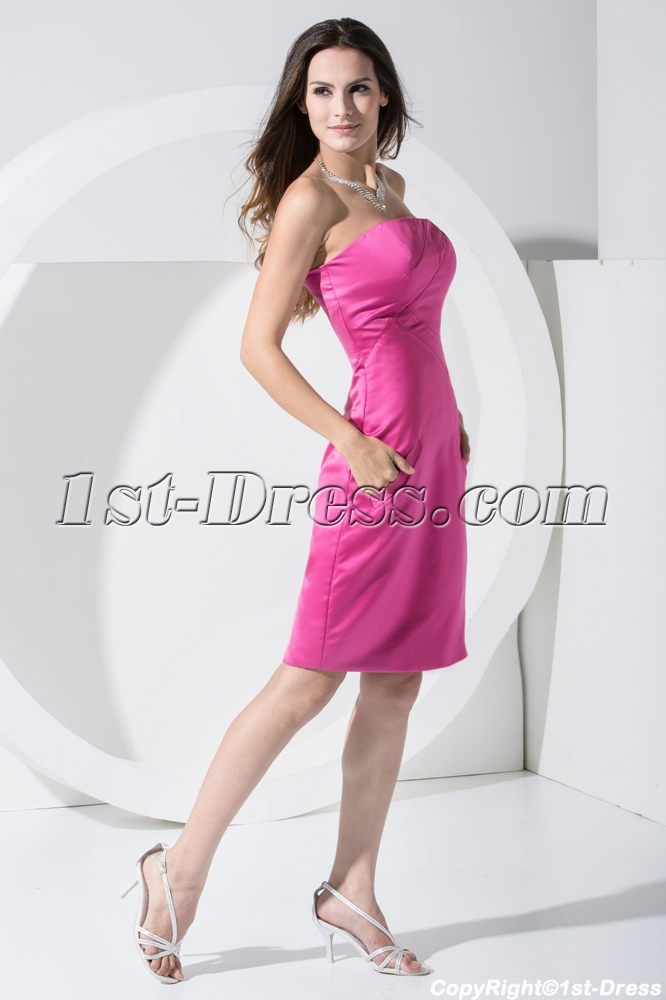 images/201303/big/Knee-Length-Strapless-Fuchsia-Homecoming-Dress-WD1-007-683-b-1-1363171191.jpg