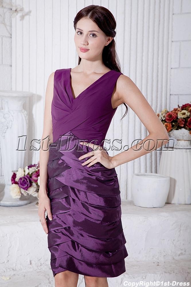 images/201303/big/Purple-Mother-of-Bride-Dress-Knee-Length-with-V-Neckline-IMG_7169-763-b-1-1363766597.jpg