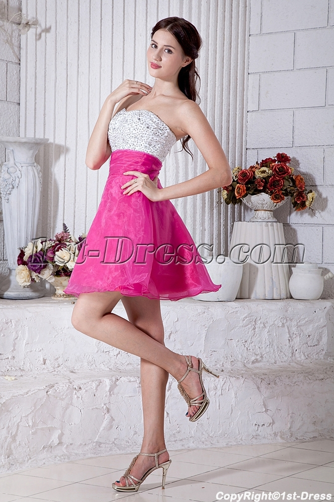 Pink And White Dress - RP Dress