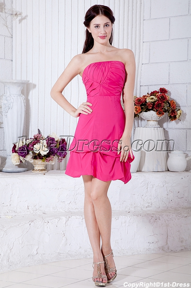 images/201303/big/Simple-Strapless-Hot-Pink-Mini-Length-Homecoming-Dress-under-$100-IMG_7050-755-b-1-1363712593.jpg