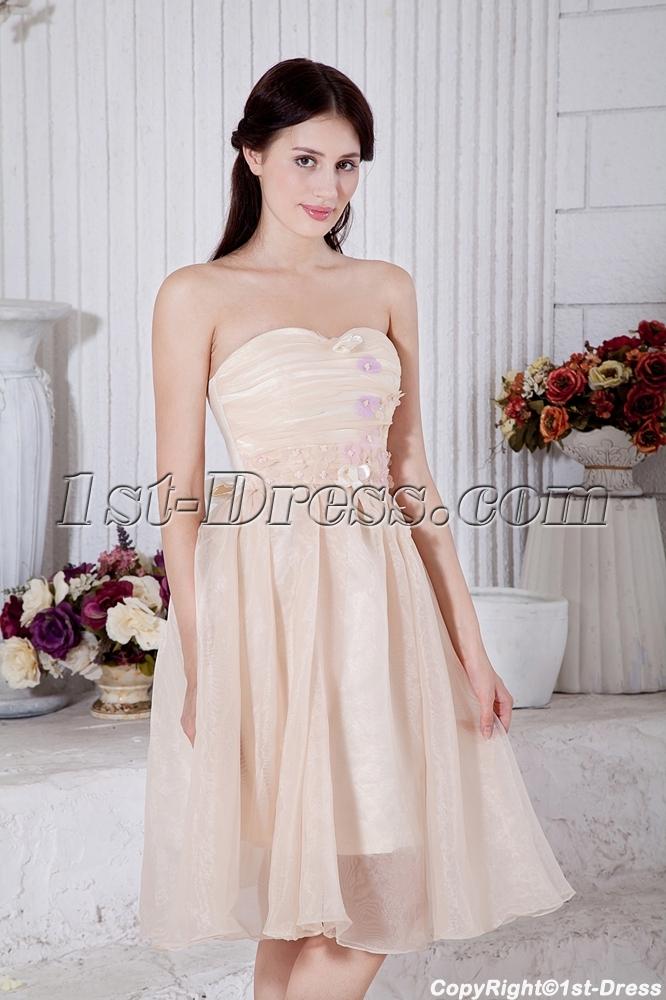 images/201303/big/Tea-Length-Champagne-Short-Junior-Bridesmaid-Dresses-IMG_7447-781-b-1-1363863419.jpg