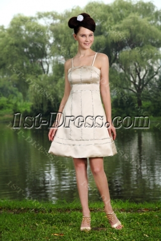 Cute Spaghetti Straps Champagne Short Homecoming Dress IMG_0747