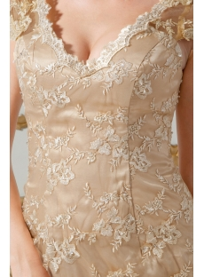 Champagne Lace Mother of Groom Dress with Cap Sleeves IMG_1747