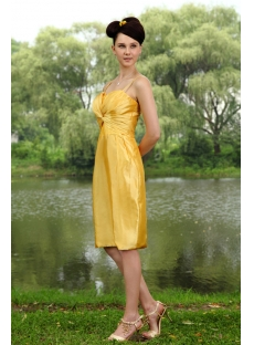 Traditional Gold Plus Size Bridesmaid Dress with Knee Length IMG_0805