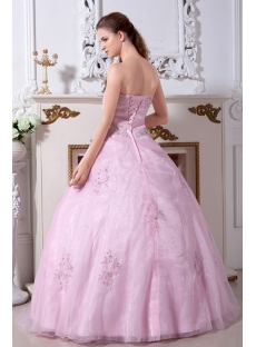 long Pink Popular 2011 Quinceanera Dresses IMG_2210