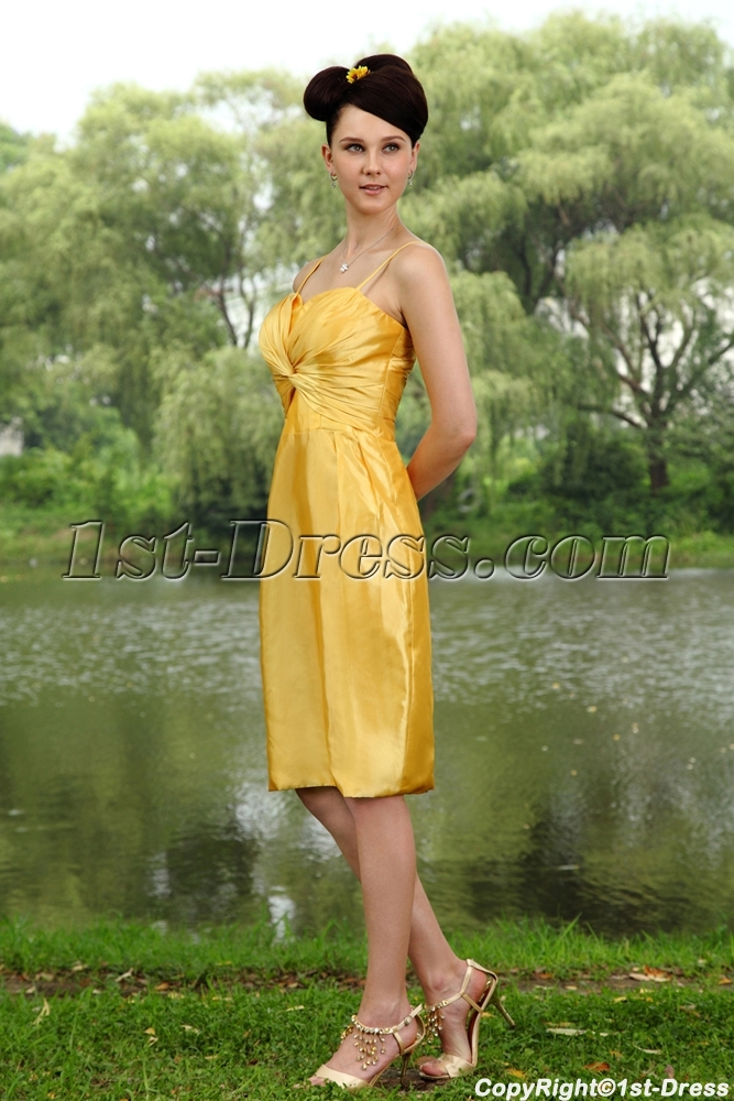 images/201304/big/Traditional-Gold-Plus-Size-Bridesmaid-Dress-with-Knee-Length-IMG_0805-1110-b-1-1367353379.jpg