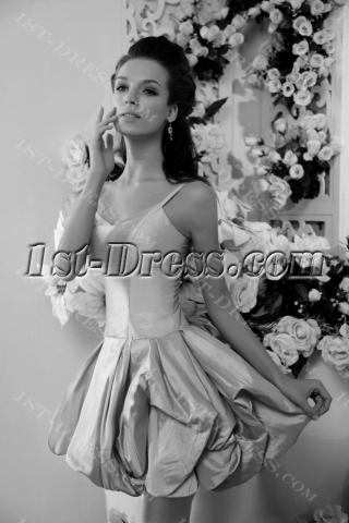 Champagne Spaghetti Straps Short 15 Quinceanera Gown 2013 IMG_0224