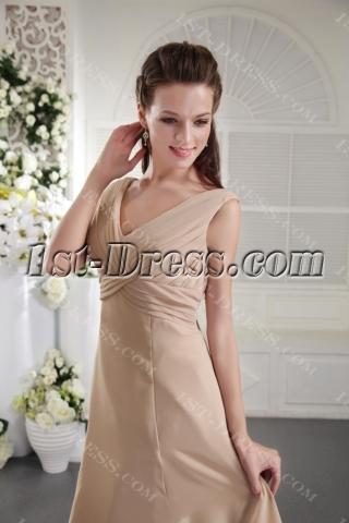 Cheap Knee Length Champagne Bridesmaid Dress 2012 IMG_0050
