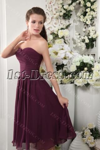 Discount Tea Length Deep Purple Bridesmaid Dresses IMG_0113