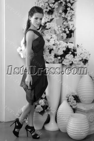 Petal Short Dark Purple Graduation Dress IMG_0121