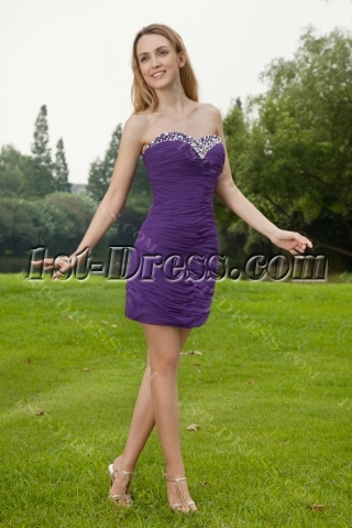 Purple Short Graduation Dresses for High School 2013 IMG_8065