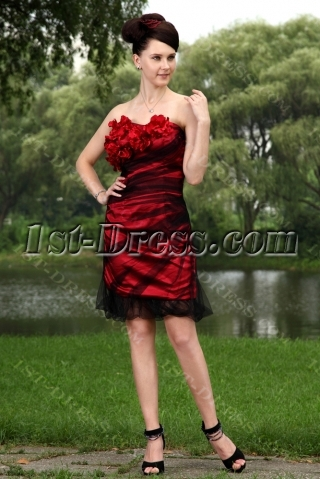 Red and Black Short Prom Dress 2011 IMG_1023