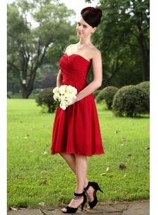 Elegant Burgundy Bridesmaid Dresses for Plus Size Girl IMG_1056