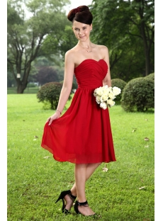 Elegant Burgundy Bridesmaid Dresses for Plus Size Girl IMG_1056