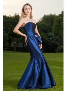 Long Pretty Royal Sheath Celebrity Gown IMG_8458
