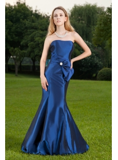Long Pretty Royal Sheath Celebrity Gown IMG_8458